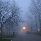 A Foggy Night by Linda Miller Gesualdo