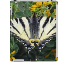Scarce Swallowtail, Iphiclides Podalirius iPad Case/Skin