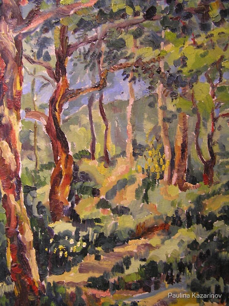 Carmel Mountain Forest, Israel by Paulina Kazarinov