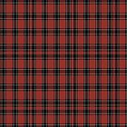 00202 Dunbar (Ancient) District Tartan  by Detnecs2013