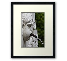 Detail of a fountain Framed Print