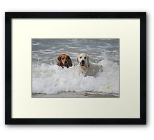 I See It! Framed Print
