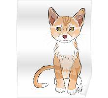 Graphic Art Cat 2 Poster