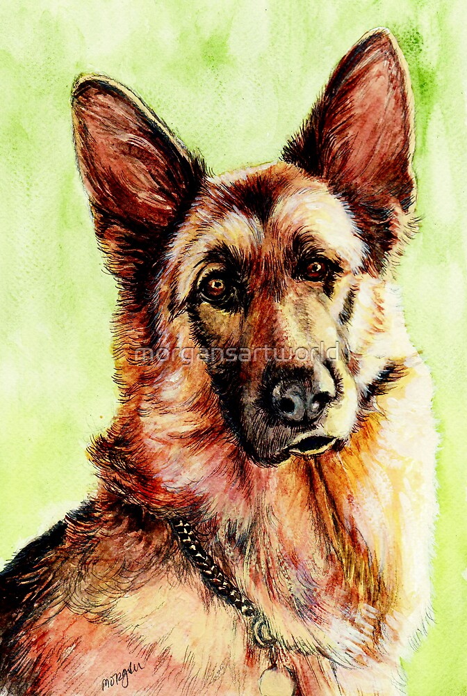 German Shepherd by morgansartworld