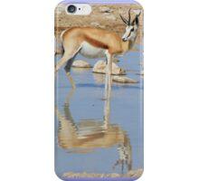 Springbok Antelope - Iconic Wildlife from the Desert iPhone Case/Skin