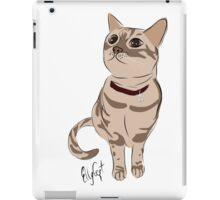 Graphic Art Cat 3 iPad Case/Skin