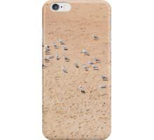 Bondi seagulls iPhone Case/Skin