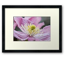 Waiting for your touch Framed Print
