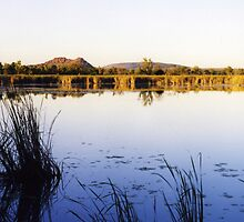 Waters of the Ord River, Kununurra, Western Australia by Christopher Biggs