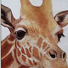 Giraffe by coolart