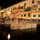 Ponte Vecchio: Night of the Coypu by Laura Cameron