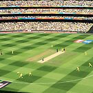2015 ICC World Cup Final by Fran53