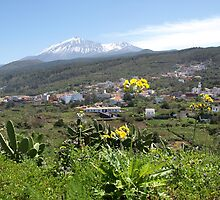 View to top EL TEIDE by Janone