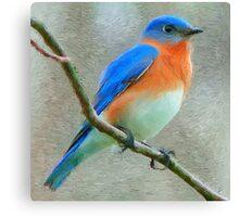 Bluebird Painting Canvas Print