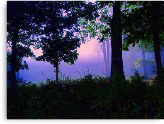 Ozark Enchantment by NatureGreeting Cards ©ccwri