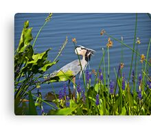 Crane with fish Canvas Print