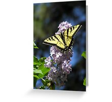 A Welcome Visitor ~ Greeting Card