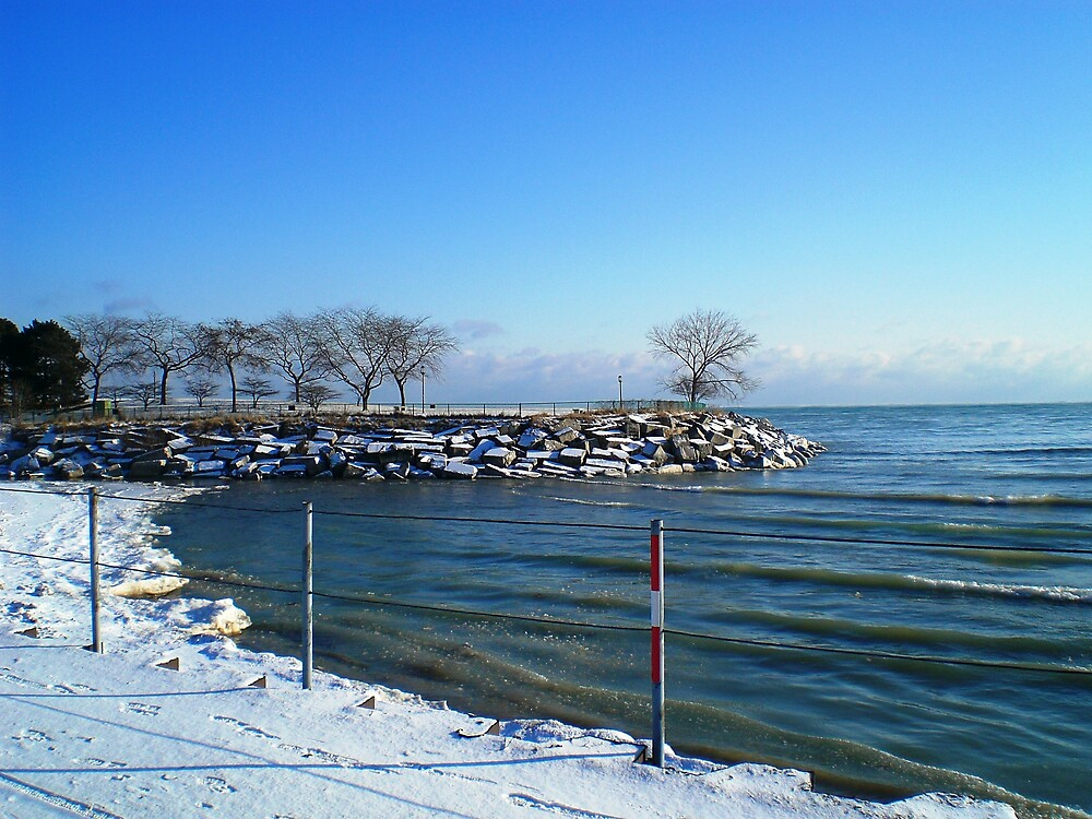 Lake Michigan seen from Northwestern Univ, in Evanston, IL by Arleen Colon