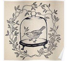 Bird - Antique Glass Dome Poster