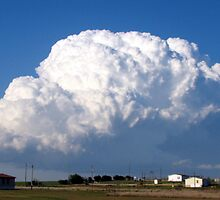 Cloud of Thunder by Sheila  Pasket