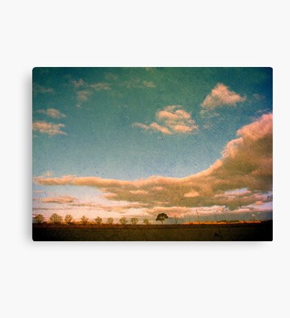 Any Day Now Canvas Print