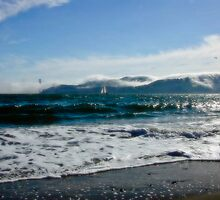 Angel Island Ocean by Nancy Stafford