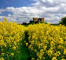 Duffus Castle by Jim Robertson