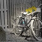 BICYCLE by Spiritinme