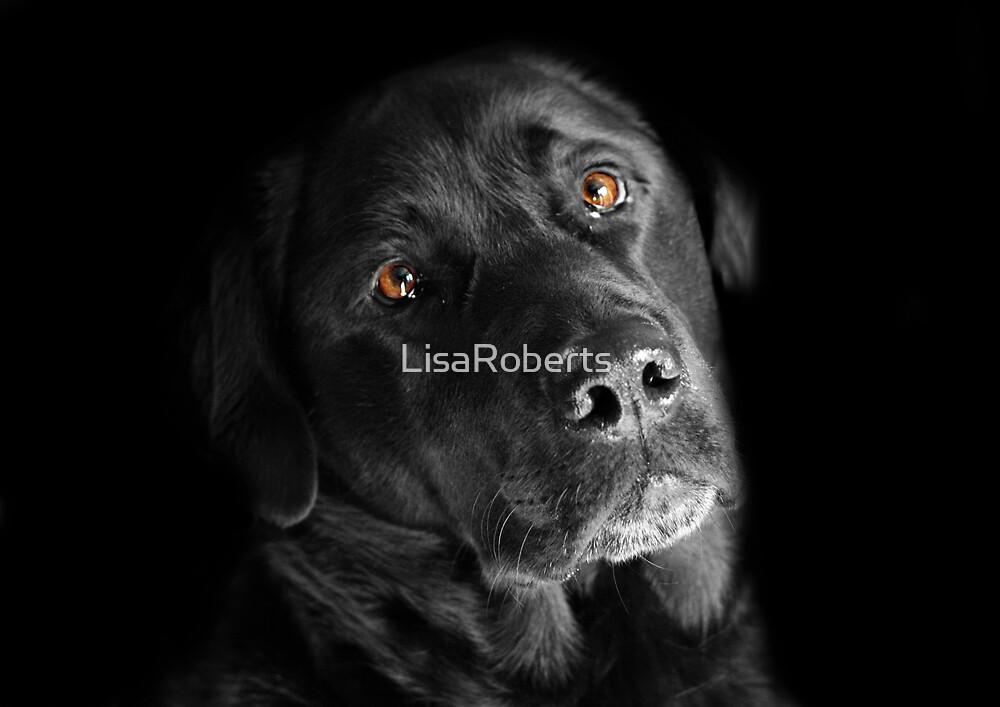 Leo no2 by LisaRoberts