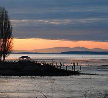 Drayton Harbor Sunset by genielamb