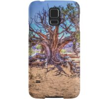 Utah Juniper on the Delicate Arch Trail Samsung Galaxy Case/Skin