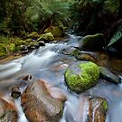 Toorongo River. by Mark Jones
