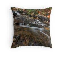 Wagner Falls Stream 2 Throw Pillow