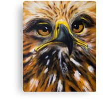 Imperial Eagle  Canvas Print