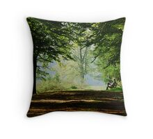 Once again enjoying the spring bench Throw Pillow