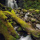 My Waterfall by Michael Walters
