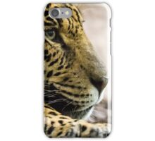 Spirit of the Jaguar iPhone Case/Skin