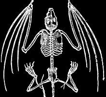 Vampire Bat Skeleton by GothFashion