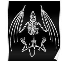 Vampire Bat Skeleton Poster