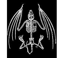 Vampire Bat Skeleton Photographic Print