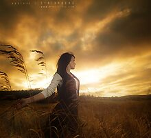Golden Sky by Andreas Stridsberg