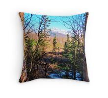 May Day on Baxter Bog Throw Pillow