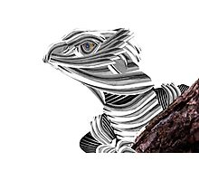 Robot Reptile Photographic Print