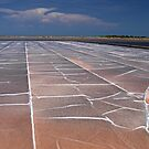 Salt Pan by Dave Lloyd