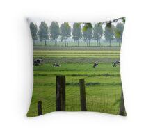 Dutch Mountains Throw Pillow