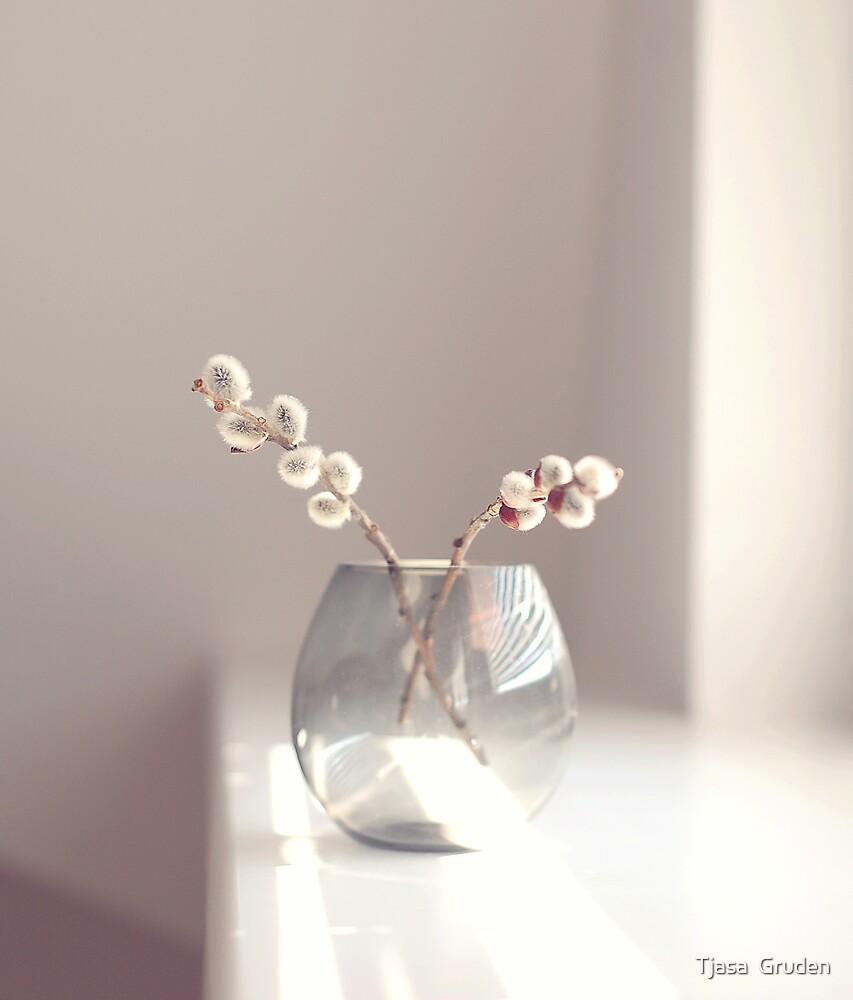 Honey light~ by Tjasa  Gruden