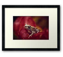 The Secret World of Peepers Framed Print