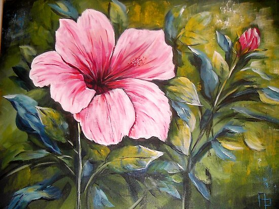 Pink Flower by Pamela Plante