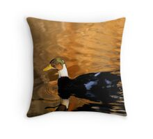 Reflections.. Throw Pillow