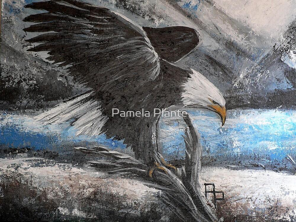 Aaron's Eagle by Pamela Plante